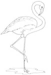 flamingo template craft outline birds on tangle doodle