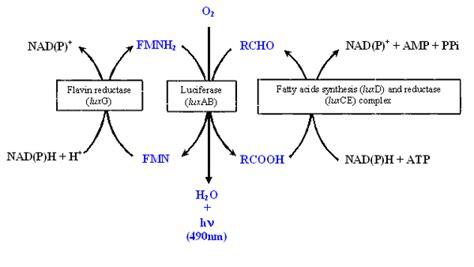 resistor definition chemistry resistors definition chemistry 28 images resistors definition chemistry 28 images series