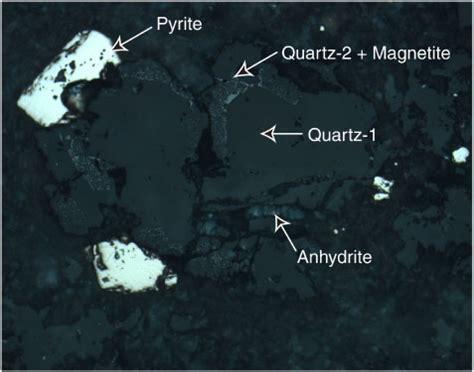 pyrite thin section figure f94 euhedral quartz quartz 1 dark gray