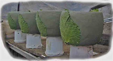 Concrete Planter Molds For Sale by Earth Molded Concrete Sculpture Concretesubmarine Forum