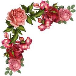 200 best images about rosas png 3 on pinterest peach