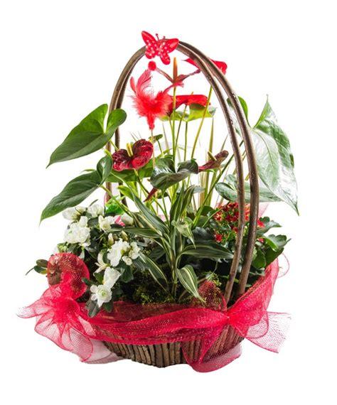 fiori a domicilio cagliari consegnacestiregalo it in cagliari invio e consegna