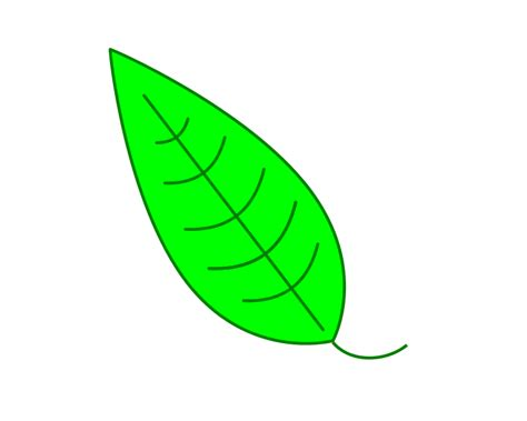 vector leaf tutorial free clipart leaf green simple leaf flowers