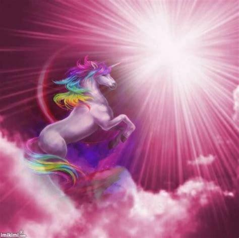imagenes de unicornios para niñas 44 best images about unicornios hermosos on pinterest
