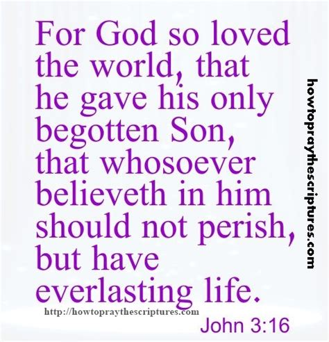 for god so loved the world for god so loved the world 3 16
