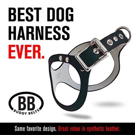 buddy belt harness review affordable buddy belt dog harness black 3 tarlingfvakolpin
