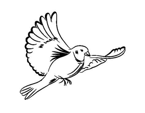 imagenes de palomas blancas para imprimir dibujo de paloma blanca para colorear dibujos net