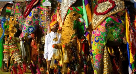 Mahout and his painted elephants, Jaipur, India   Art Wolfe