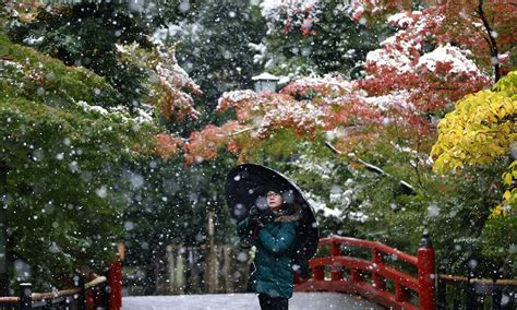 november tokyo tokyo sees first november snow in more than 50 years