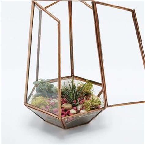 urban grow open top copper terrarium from urban outfitters