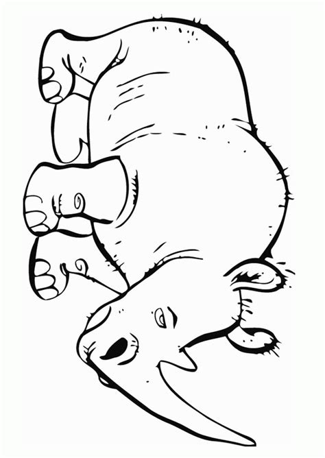 rhino coloring page rhino coloring pages coloring home