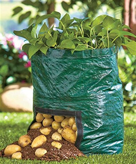 Grow Bag Gardening by Free Shipping Pe Planting Bag Home Gardening Vegetable