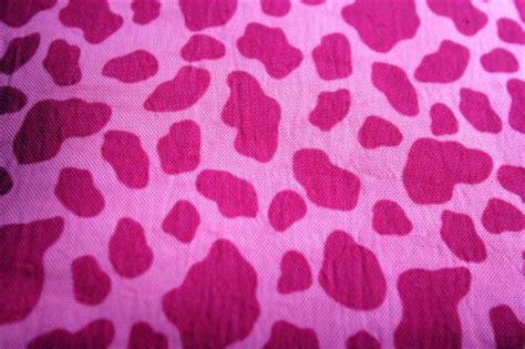 Safitri Pink 핑크 사파리 배경 핑크 무료 사진 무료 다운로드