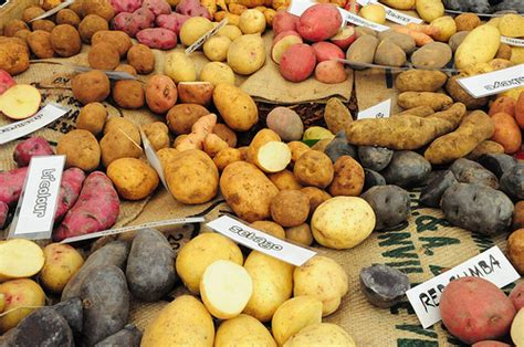 different types of potatoes flickr photo