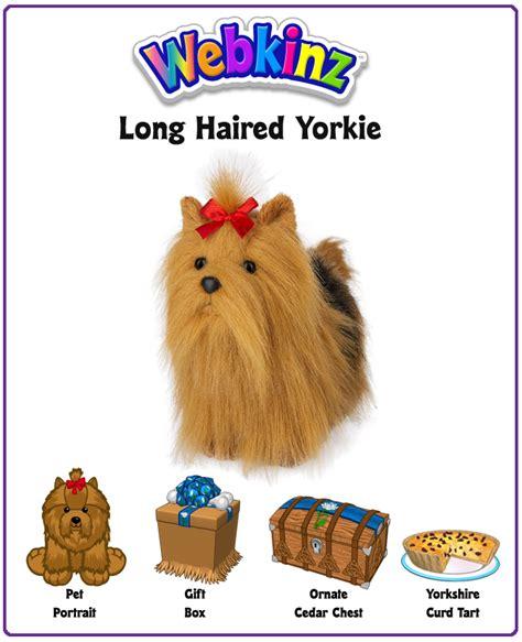 webkinz yorkie webkinz haired yorkie unboxing wkn webkinz newz