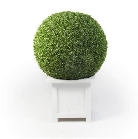 Shallow Planter Box by Cfrentals Furniture Rentals Showroom