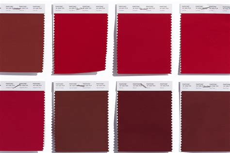 Pantone Color Palette 2017 by Color Intelligence Red Feel The Excitement