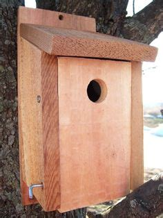 1000 images about nest bird houses materials on
