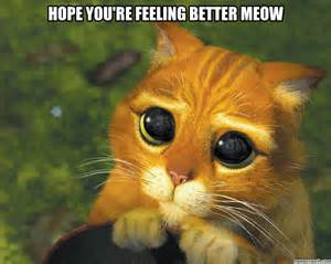 better feeling you re feeling better meow
