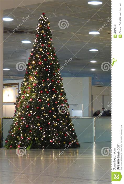 large christmas tree editorial photo image of giant