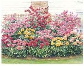 free perennial garden designs image mag