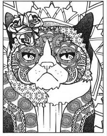 cats dogs xx images  pinterest coloring