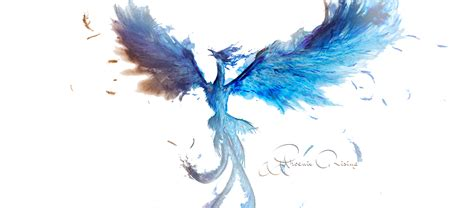 blue phoenix png free download png mart