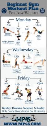 Beginner gym workout plan for lose weight infographic