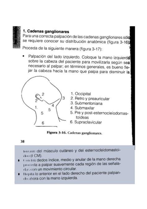 cadenas ganglionares palpacion documento doc2