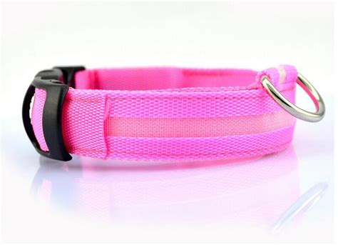 rechargeable led collar led collar usb rechargeable dogcoral