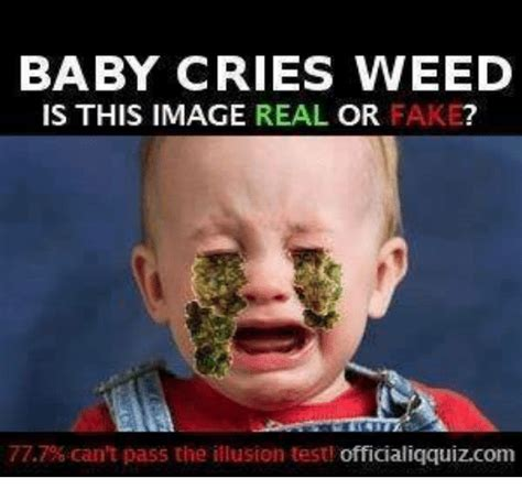 Fuck Him Meme - baby cries weed is this image real or fake 777 can t