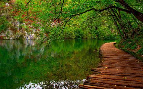 imagenes minimalistas naturaleza fondo de pantalla naturaleza rio camino de madera hd