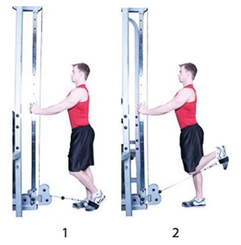 Nonworking Cable Leg Curl Exercise Guide Bodybuilding Wizard