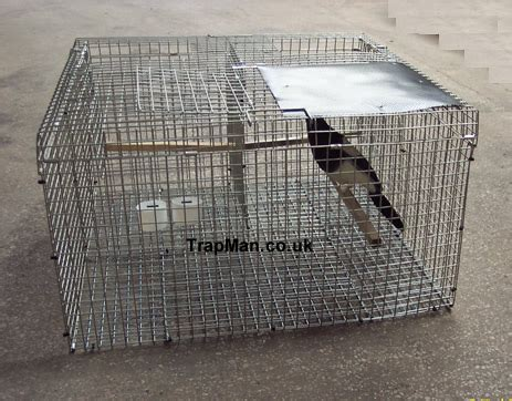 magpie house design larsen traps side entry larsen traps top entry larsen traps crow traps magpie traps