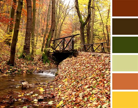 fall color schemes 2013 fall color trends vogel