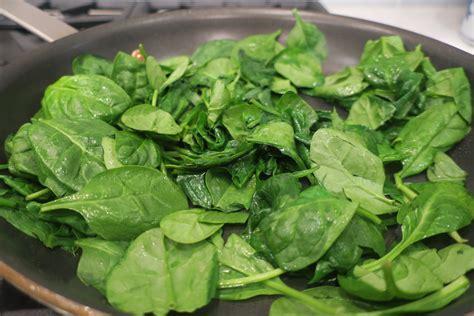protein in spinach protein spinach patties finding euphoria