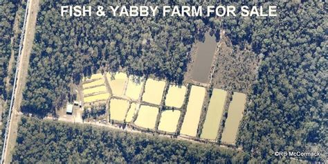 Backyard Sheds Sydney Yabby Farm For Sale Australian Aquatic Biological