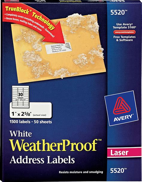 avery 5524 template avery 174 white weatherproof address labels 5520 avery