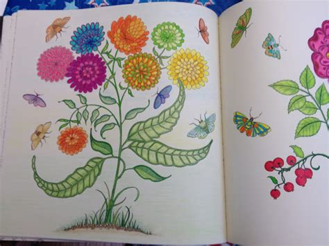 secret garden coloring book colored pencil the jersey momma the best coloring books