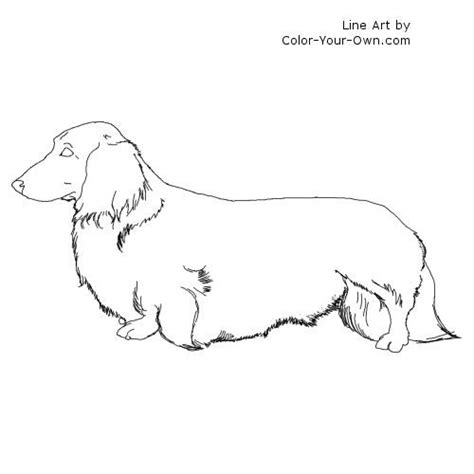 wiener dog coloring page 1000 images about dachshund coloring pages on pinterest