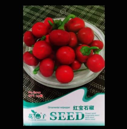 Bibit Benih Seeds Yellow Pepper Cabe Unik Ornamental benih cabai ornamental pepper 20 biji retail asia bibitbunga