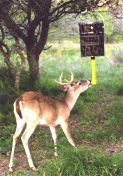 nudge deer feeder plans wildgame innovations nudge hanging realtree apg camo