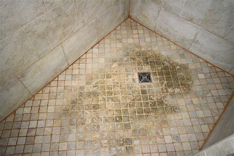 Cleaning Tile Shower Floors by Tile And Grout Cleaning Professionals Quest Floor Care