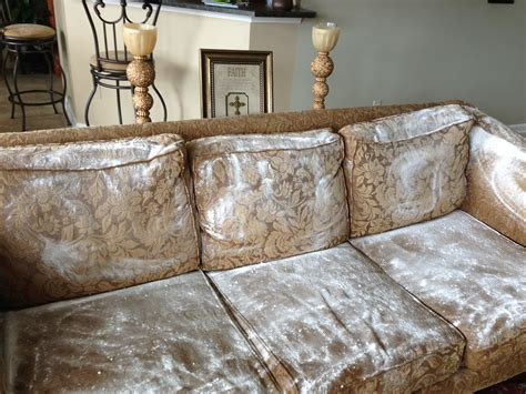 couch mold remove odors from fabric sofa welcome to the adored home