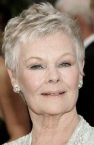 pixie cut instructions judi dench pixie instructions short hairstyle 2013