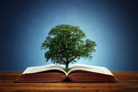 tree in bible one essential ingredient for a rich and vibrant faith
