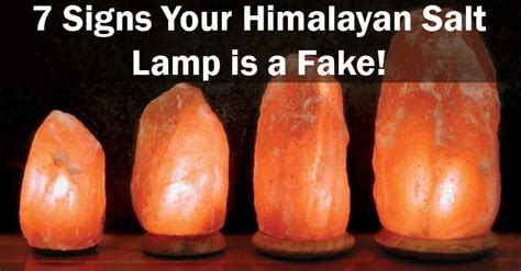 where to buy a real himalayan salt l fake himalayan salt ls are everywhere here is how to