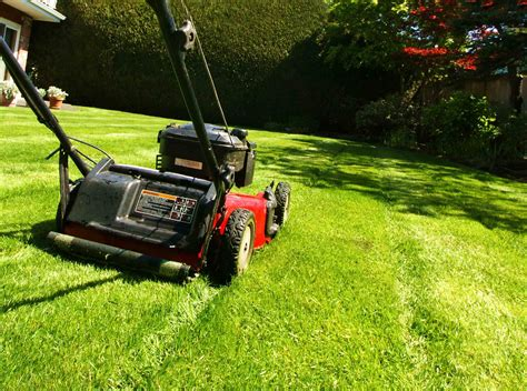 mowing the lawn for the mowing the lawn be sure to scoop the