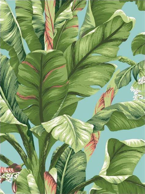 banana tropical wallpaper best 20 tropical wallpaper ideas on pinterest