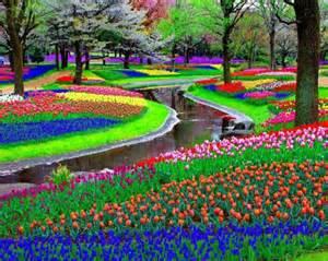 Flowers Of Netherlands - the netherlands the world s biggest flower garden
